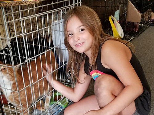 Girl visiting rescued cats