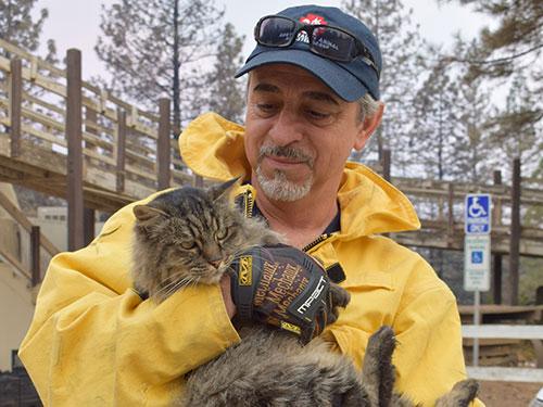 Volunteer with rescued cat