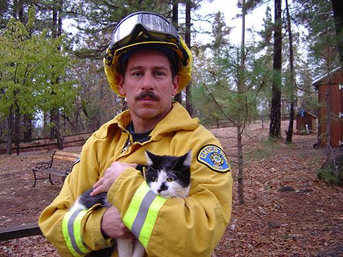 Rescue volunteer with cat