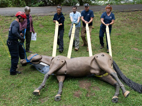 People with rescue equipment on mannequin horse