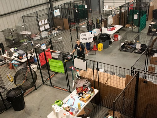 Arial view of small animal shelter